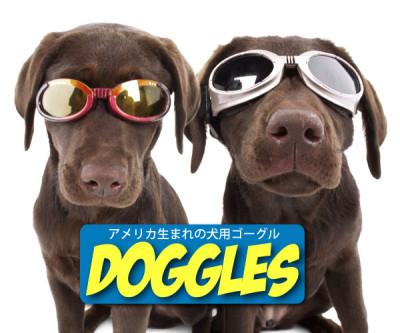 犬用ゴーグル ドグルズ