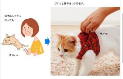 ハンドルベスト 取っ手付きの猫服