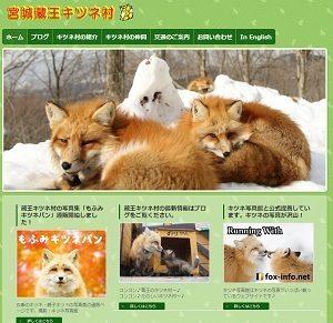 志村どうぶつ園で紹介、蔵王キツネ村 公式ホームページ アクセス