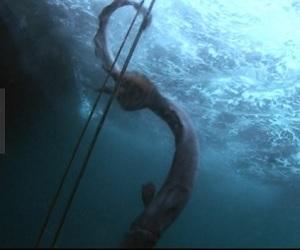 TOKIO城島&山口 幻のサメ ラブカを生きたまま捕獲!学会発表レベルに凄い