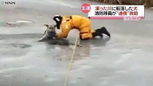 カナダ 犬が氷の穴に落ち、消防隊員が救う画像が話題