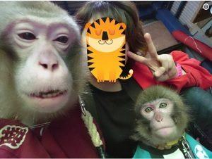 日本一客が来ない動物園 東筑波ユートピア 志村どうぶつ園 女性飼育員