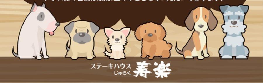 犬と入れる那須のとちぎ和牛ステーキ屋さん「寿楽」旅サラダで紹介!