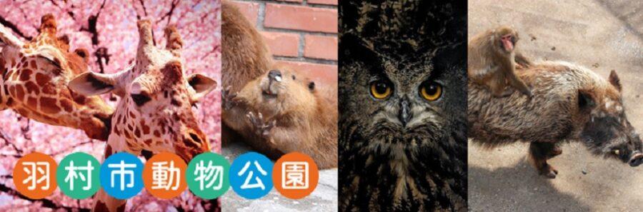 I LOVE みんなのどうぶつ園 ヤマアラシとレッサーパンダのバズり動画に挑戦 羽村市動物公園 東京都羽村市